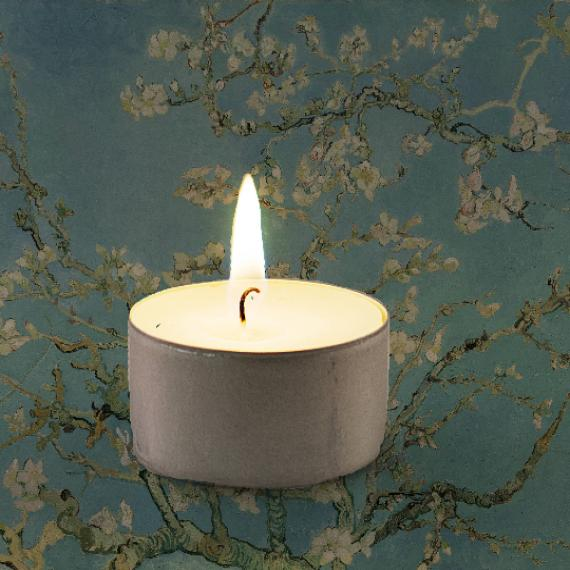 Almond Blossom Scented Tealights