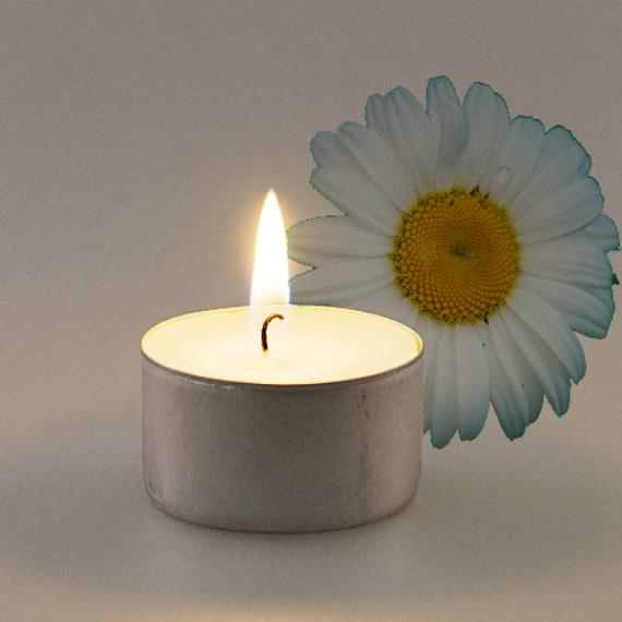 Chamomile Scented Tealights